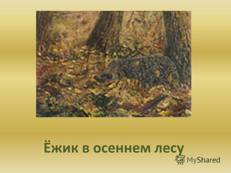 Ёжик в осеннем лесу