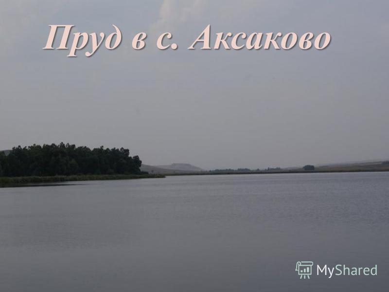 пп Пруд в с. Аксаково