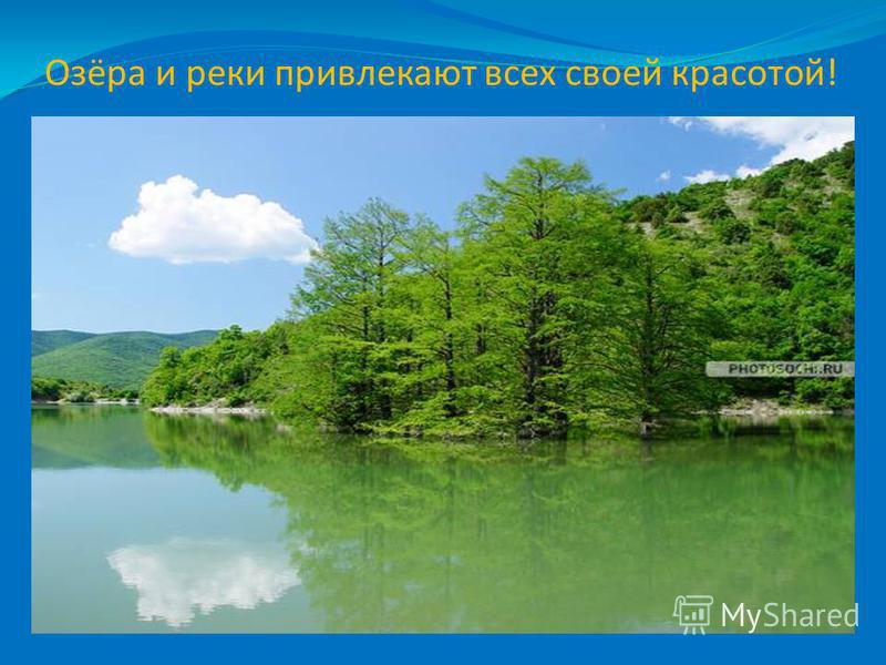 Озёра и реки привлекают всех своей красотой!