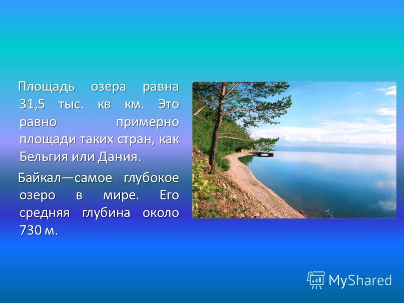 Площадь озера равна 31,5 тыс. кв км. Это равно примерно площади таких стран, как Бельгия или Дания. Байкалсамое глубокое озеро в мире. Его средняя глубина около 730 м. Байкалсамое глубокое озеро в мире. Его средняя глубина около 730 м.