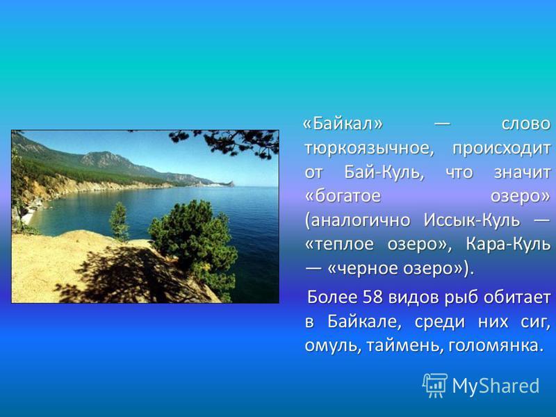 «Байкал» слово тюркоязычное, происходит от Бай-Куль, что значит «богатое озеро» (аналогично Иссык-Куль «теплое озеро», Кара-Куль «черное озеро»). «Байкал» слово тюркоязычное, происходит от Бай-Куль, что значит «богатое озеро» (аналогично Иссык-Куль «