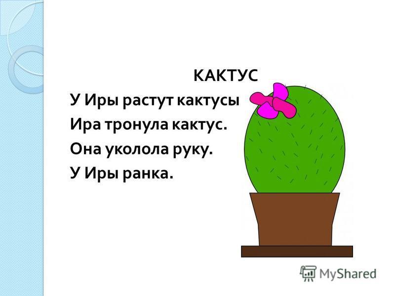 КАКТУС У Иры растут кактусы. Ира тронула кактус. Она уколола руку. У Иры ранка.