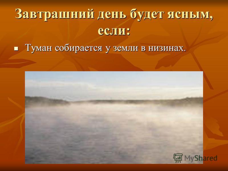 Завтрашний день будет ясным, если: Туман собирается у земли в низинах. Туман собирается у земли в низинах.
