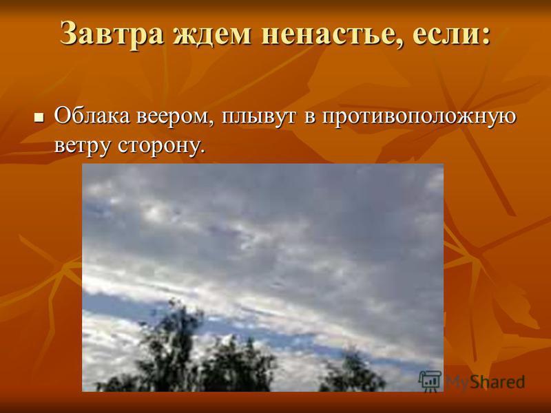 Завтра ждем ненастье, если: Облака веером, плывут в противоположную ветру сторону. Облака веером, плывут в противоположную ветру сторону.