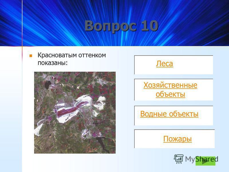Леса Населенные пункты Хозяйственные сооружения Поливные земли Круговые диаграммы отображают: Вопрос 9