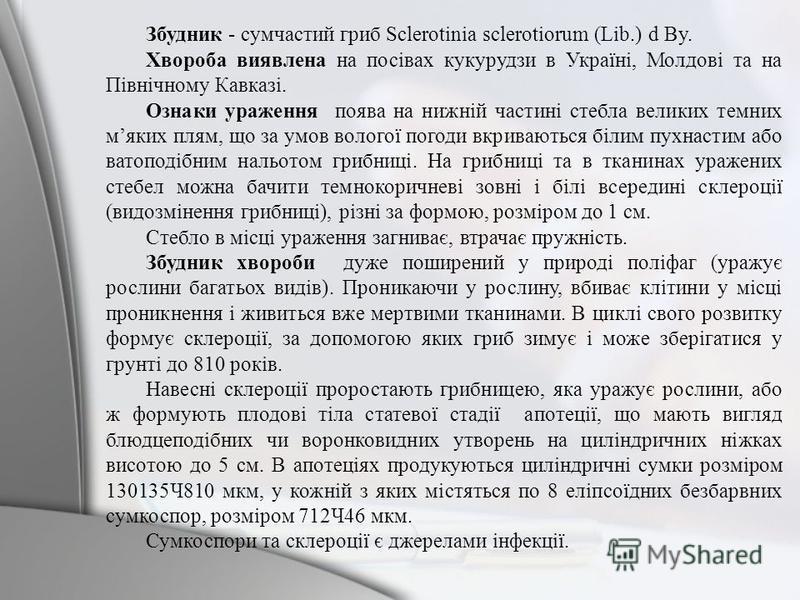 Збудник - сумчастий гриб Sclerotinia sclerotiorum (Lib.) d By. Хвороба виявлена на посівах кукурудзи в Україні, Молдові та на Північному Кавказі. Ознаки ураження поява на нижній частині стебла великих темних мяких плям, що за умов вологої погоди вкри