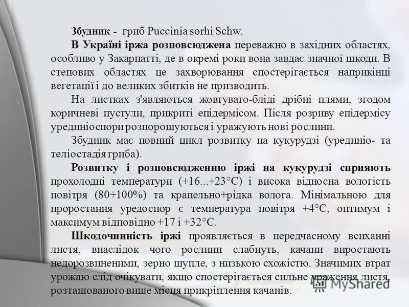Збудник - гриб Puccinia sorhi Schw. В Україні іржа розповсюджена переважно в західних областях, особливо у Закарпатті, де в окремі роки вона завдає значної шкоди. В степових областях це захворювання спостерігається наприкінці вегетації і до великих з