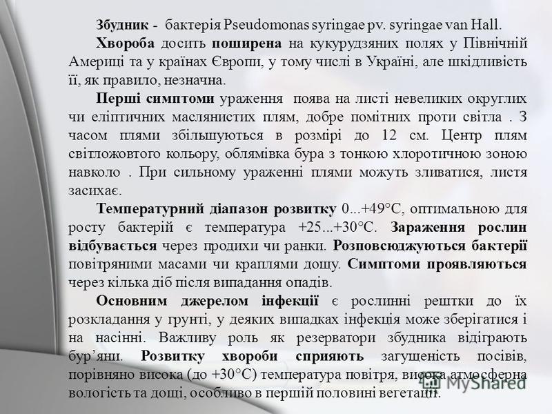 Збудник - бактерія Pseudomonas syringae pv. syringae van Hall. Хвороба досить поширена на кукурудзяних полях у Північній Америці та у країнах Європи, у тому числі в Україні, але шкідливість її, як правило, незначна. Перші симптоми ураження поява на л