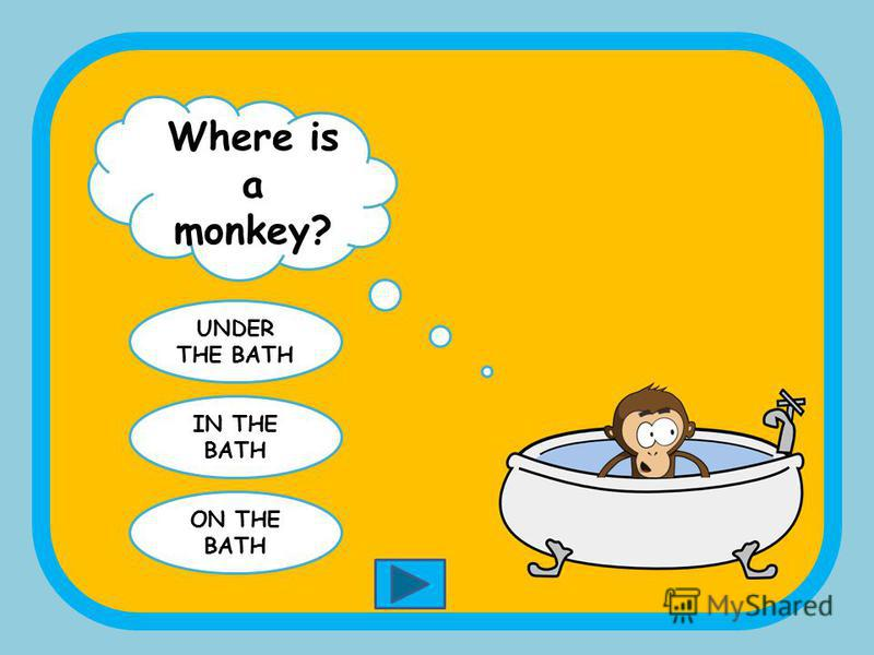 Where is a monkey? IN THE BOX ON THE BOX BETWEEN THE BOXES