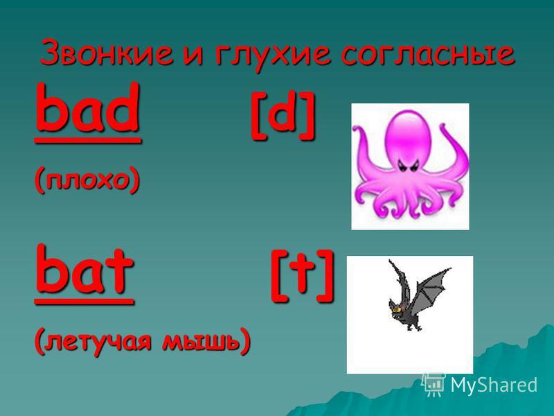 Звонкие и глухие согласные bad [d] (плохо) bat [t] (летучая мышь)