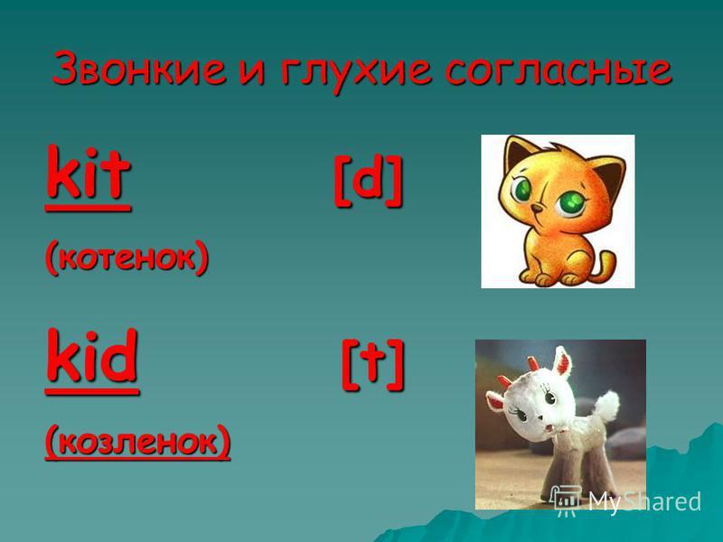 Звонкие и глухие согласные kit [d] (котенок) kid [t] (козленок)