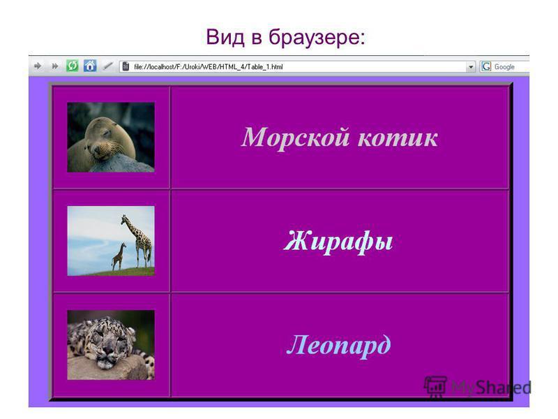 Вид в браузере: