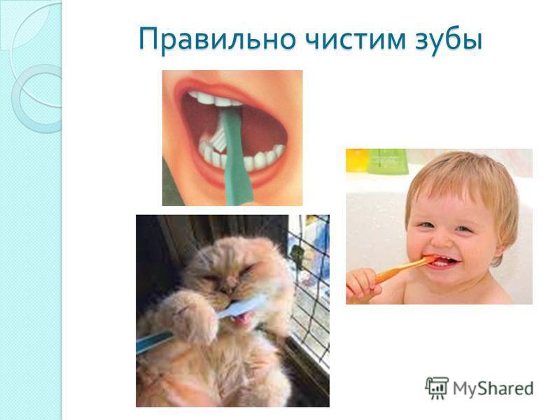 Правильно чистим зубы