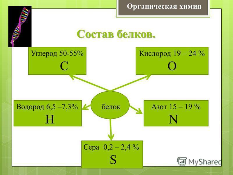 Состав белков. Органическая химия белок Углерод 50-55% С Кислород 19 – 24 % О Водород 6,5 –7,3% Н Азот 15 – 19 % N Сера 0,2 – 2,4 % S