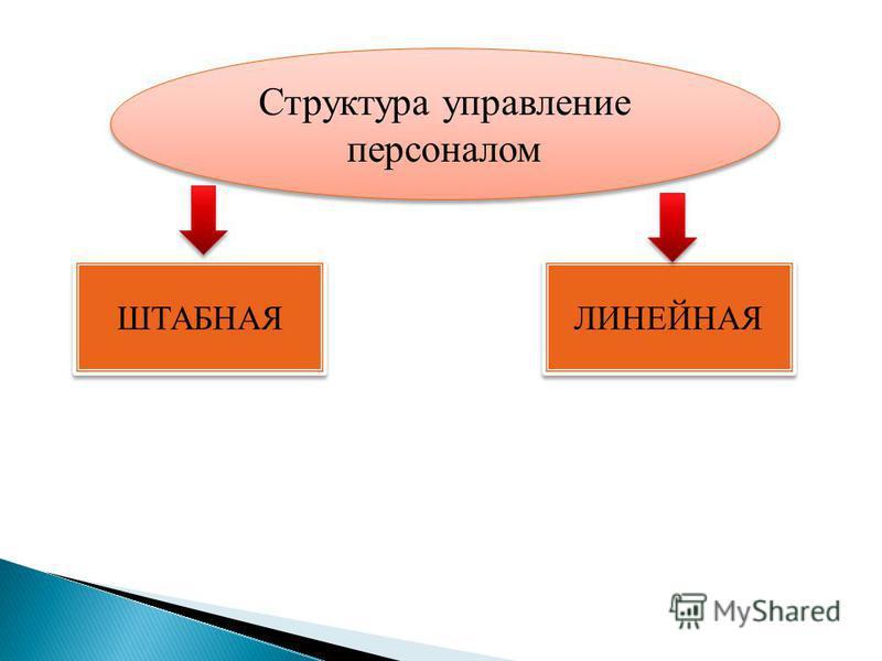 Структура управление персоналом ШТАБНАЯ ЛИНЕЙНАЯ