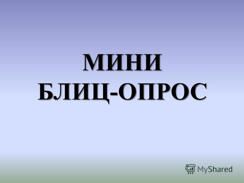 МИНИ БЛИЦ-ОПРОС