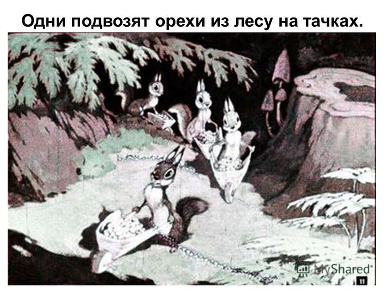 Одни подвозят орехи из лесу на тачках.