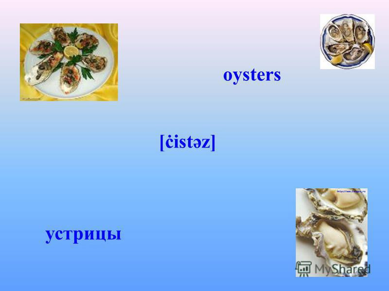 oysters [ċistəz] устрицы