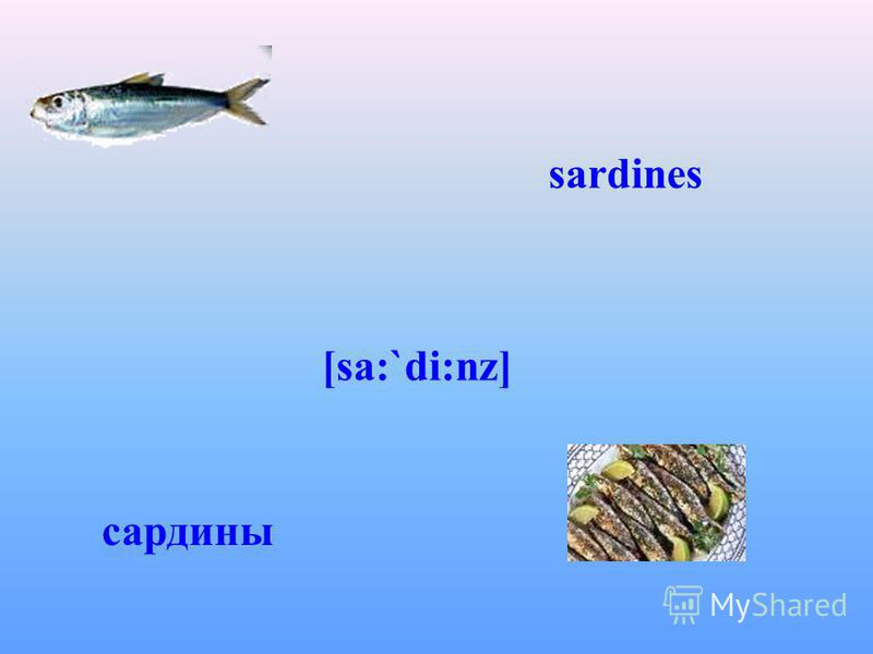sardines [sa:`di:nz] сардины
