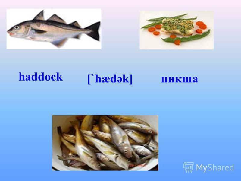 haddock [`hædək]пикша