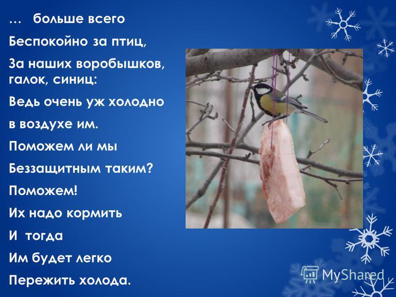 … больше всего Беспокойно за птиц, За наших воробышков, галок, синиц: Ведь очень уж холодно в воздухе им. Поможем ли мы Беззащитным таким? Поможем! Их надо кормить И тогда Им будет легко Пережить холода.