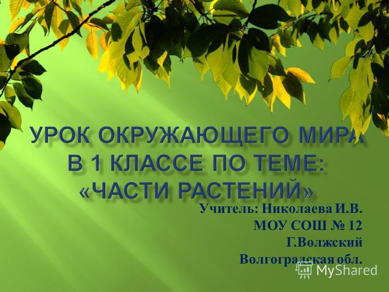 Учитель : Николаева И. В. МОУ СОШ 12 Г. Волжский Волгоградская обл.