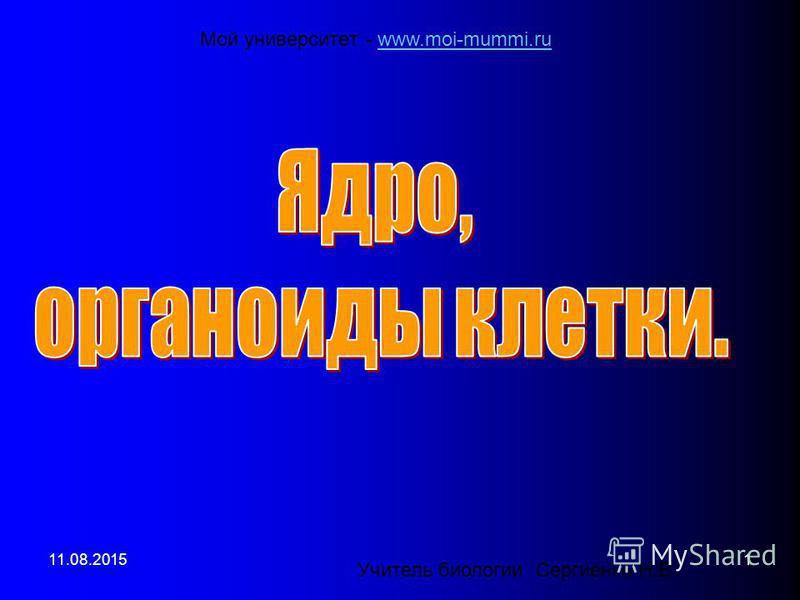 Учитель биологии Сергиенко Н.В. 11.08.20151 Мой университет - www.moi-mummi.ruwww.moi-mummi.ru