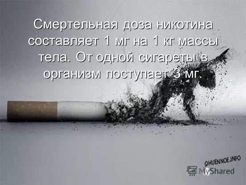 Смертельная доза никотина составляет 1 мг на 1 кг массы тела. От одной сигареты в организм поступает 3 мг.