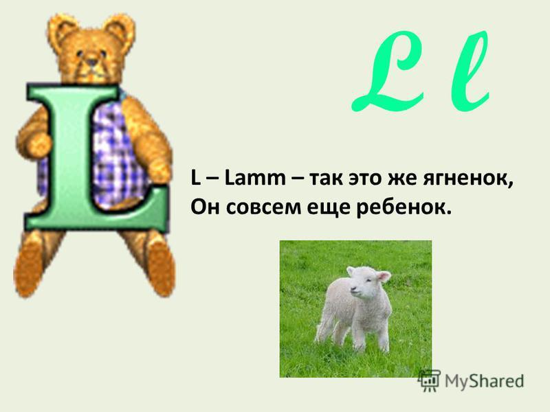 L l L – Lamm – так это же ягненок, Он совсем еще ребенок.