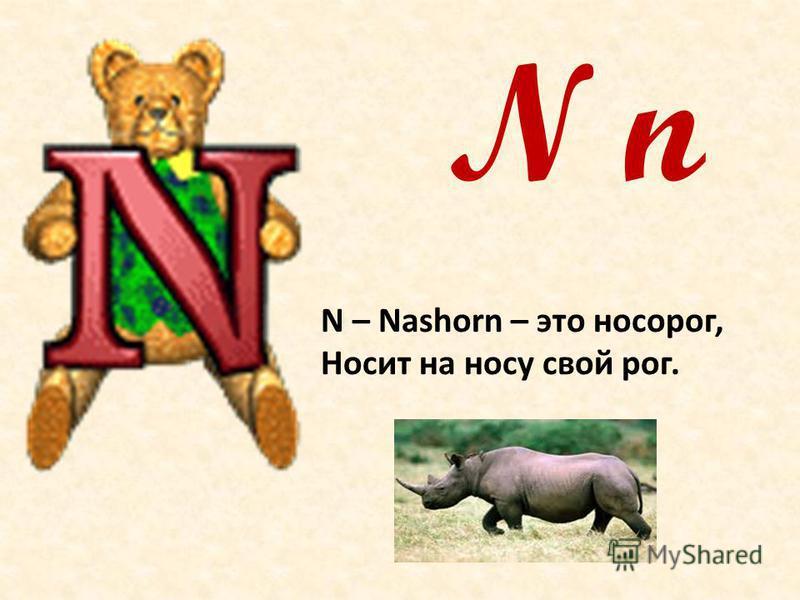 N n N – Nashorn – это носорог, Носит на носу свой рог.