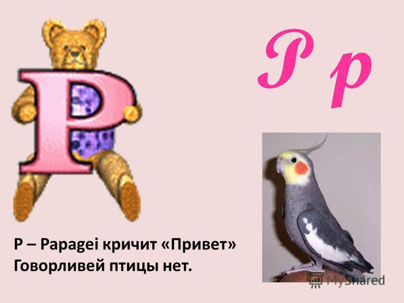 P p Р – Papagei кричит «Привет» Говорливей птицы нет.