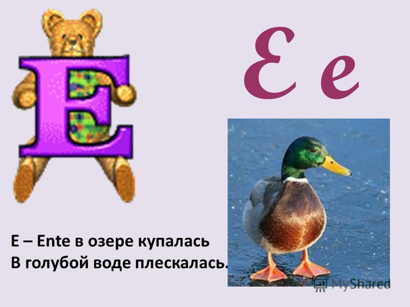 E e Е – Ente в озере купалась В голубой воде плескалась.