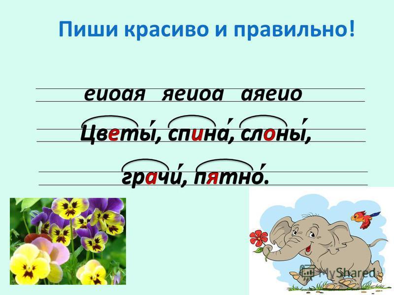 Пиши красиво и правильно! еиоая яеиоа аяеио Цветы, спина, слоны, грачи, пятно. Цветы, спина, слоны, грачи, пятно.