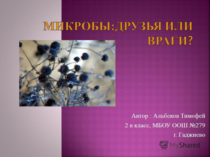 Автор : Альбеков Тимофей 2 в класс, МБОУ ООШ 279 г. Гаджиево