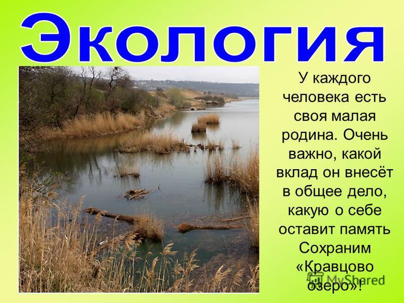 У каждого человека есть своя малая родина. Очень важно, какой вклад он внесёт в общее дело, какую о себе оставит память Сохраним «Кравцово озеро»!
