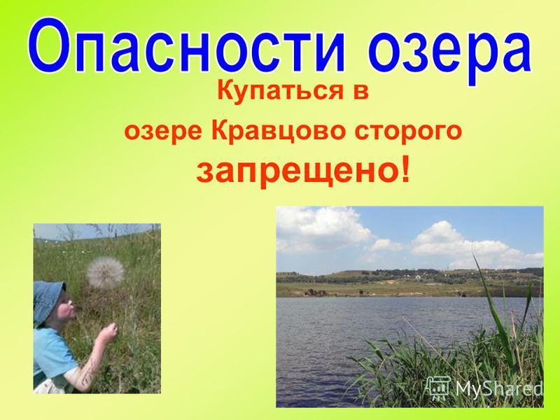 Купаться в озере Кравцово строго запрещено!