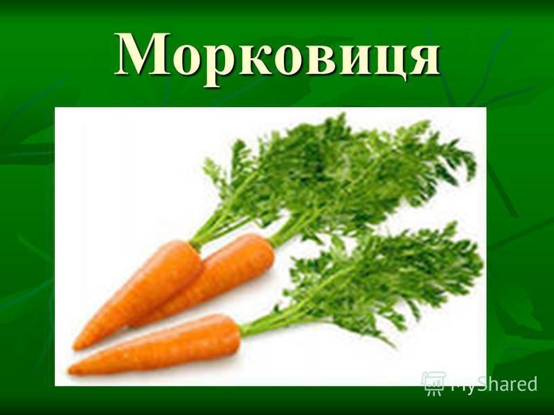 Морковиця