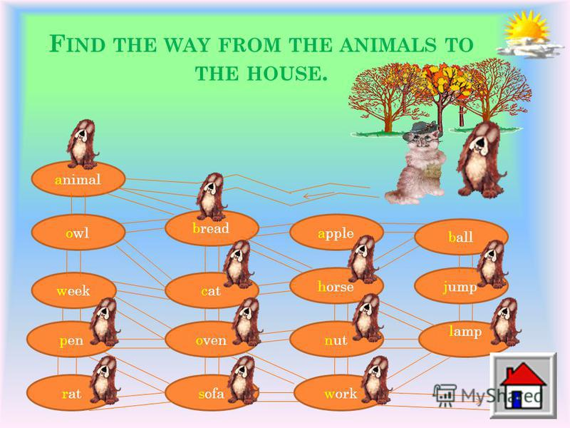 F IND THE WAY FROM THE ANIMALS TO THE HOUSE. animal owl week pen rat bread cat oven sofa apple horse nut work ball jump lamp