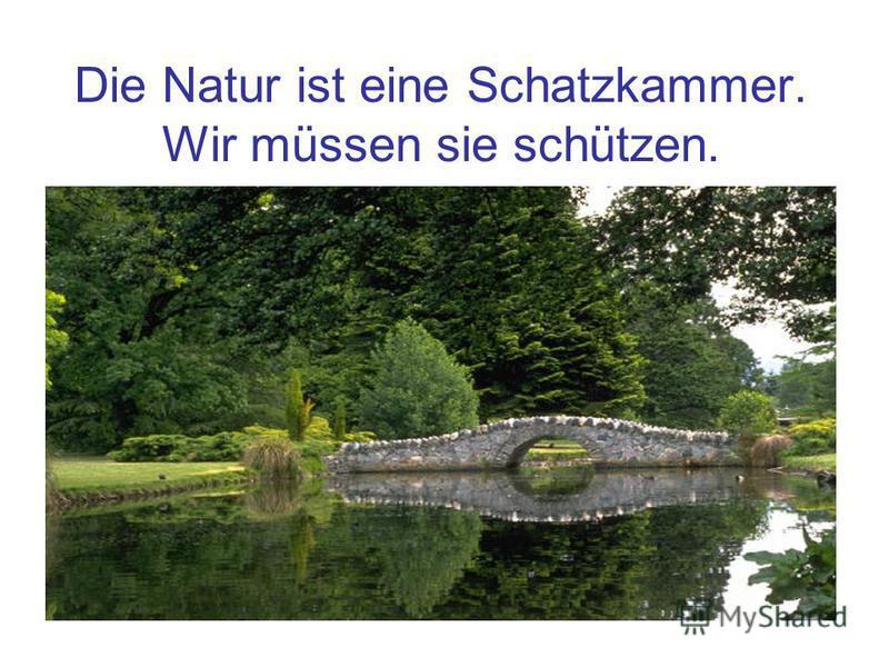 Die Natur ist eine Schatzkammer. Wir müssen sie schützen.