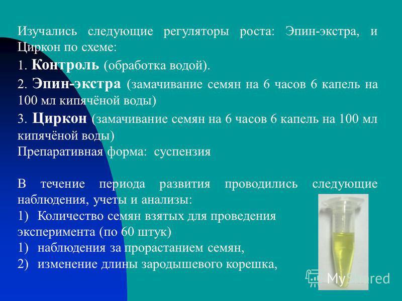 Изучались следующие регуляторы роста: Эпин-экстра, и Циркон по схеме: 1. Контроль (обработка водой). 2. Эпин-экстра (замачивание семян на 6 часов 6 капель на 100 мл кипячёной воды) 3. Циркон (замачивание семян на 6 часов 6 капель на 100 мл кипячёной
