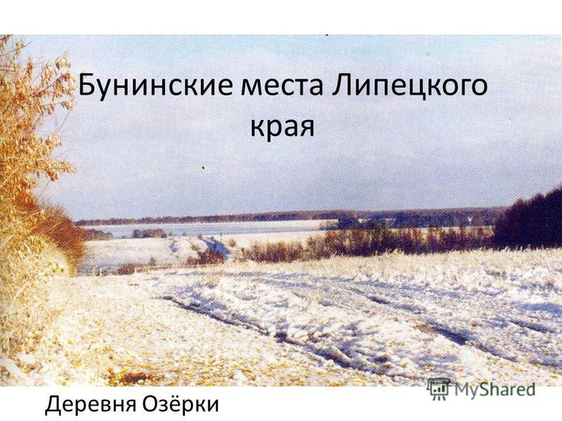Бунинские места Липецкого края Деревня Озёрки