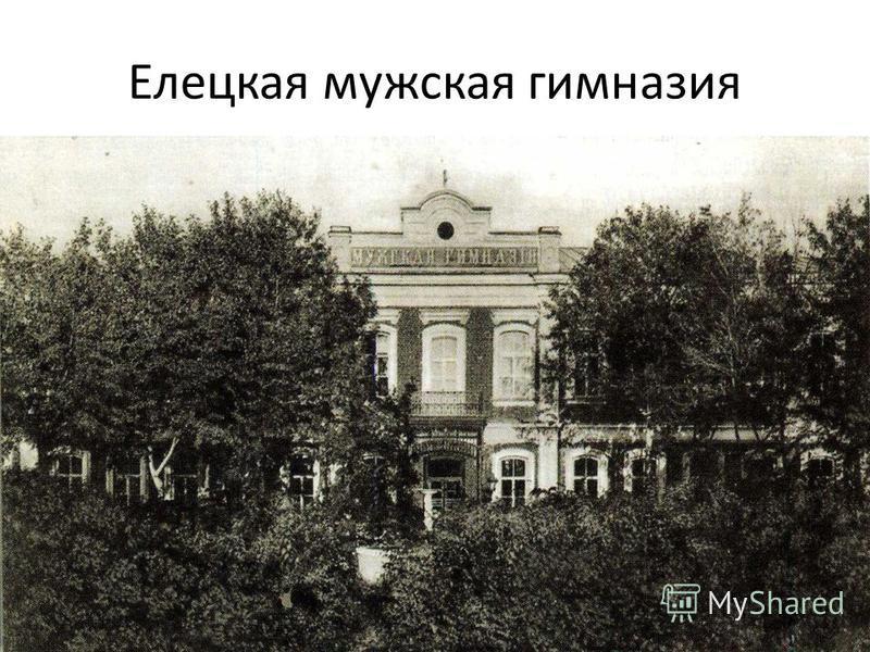 Елецкая мужская гимназия