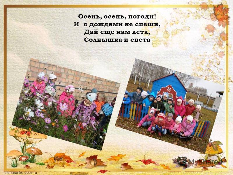 Осень, осень, погоди! И с дождями не спеши, Дай еще нам лета, Солнышка и света