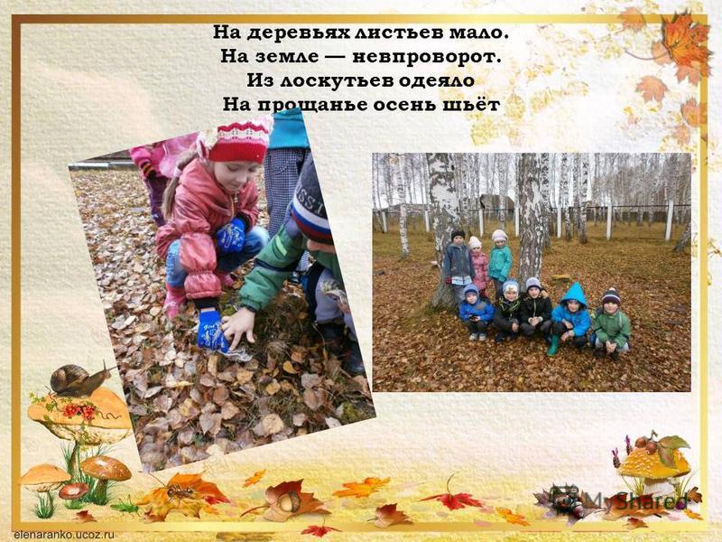 На деревьях листьев мало. На земле невпроворот. Из лоскутьев одеяло На прощанье осень шьёт