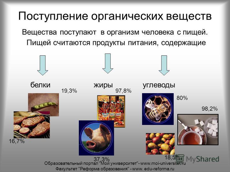 Поступление органических веществ Вещества поступают в организм человека с пищей. Пищей считаются продукты питания, содержащие белки жиры углеводы 7 4,9% 18,5% 19,3% 37,3% 97,8% 16,7% 98,2% 80% Образовательный портал