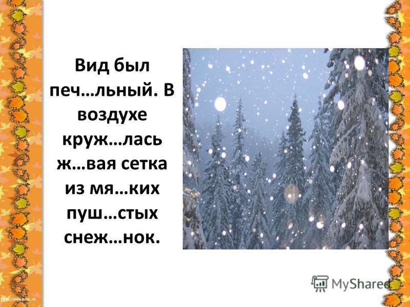 Вид был печ…льный. В воздухе круз…лось ж…вайя сетка из мя…ких пуш…стих снеж…нок.