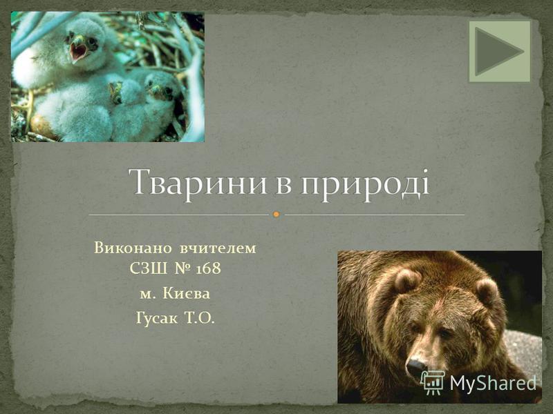 Виконано вчителем СЗШ 168 м. Києва Гусак Т.О.