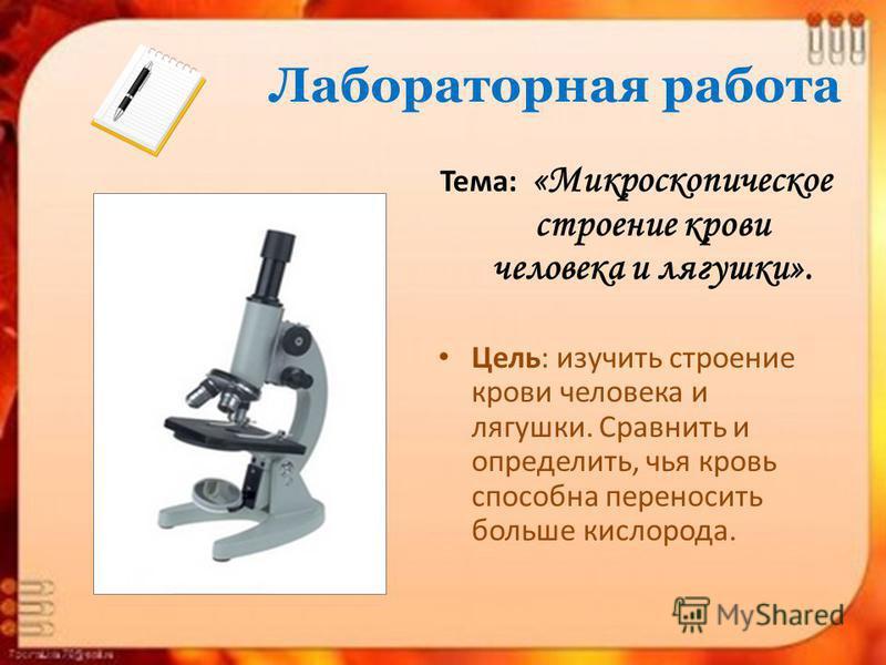 Лабораторная работа Тема: «Микроскопическое строение крови человека и лягушки». Цель: изучить строение крови человека и лягушки. Сравнить и определить, чья кровь способна переносить больше кислорода.