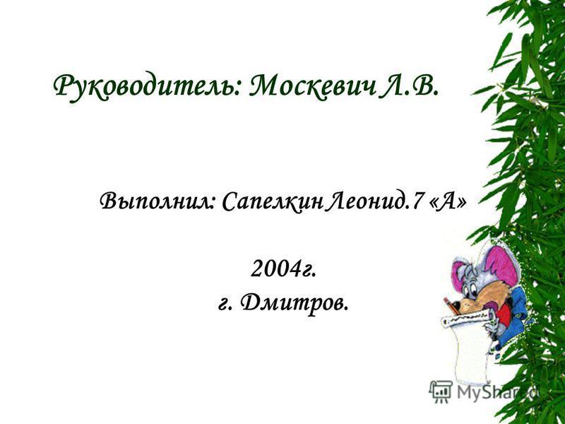 МОУ гимназия «Дмитров» Исследовательская работа: Диагностика интересов учеников 7 «А» класса с прикладным результатом.