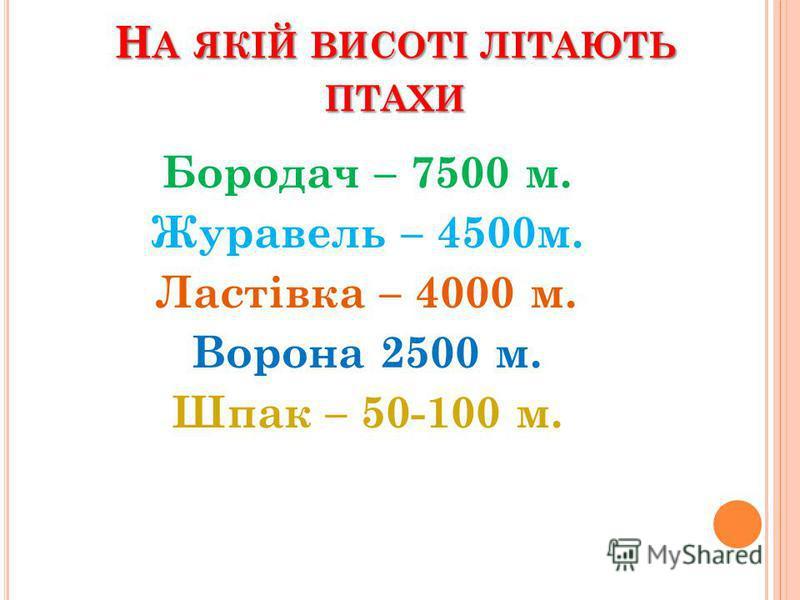 Н А ЯКІЙ ВИСОТІ ЛІТАЮТЬ ПТАХИ Бородач – 7500 м. Журавель – 4500м. Ластівка – 4000 м. Ворона 2500 м. Шпак – 50-100 м.